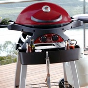 Premium Gas BBQ Grill 2 burners model